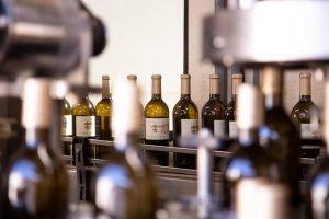 Bottling 2019 Vintage